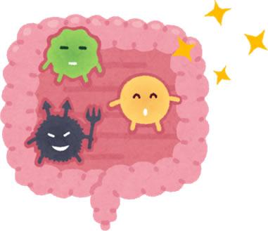 あなたの性格は腸内細菌が決めている!?